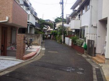 NEC_0556.JPG