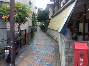NEC_0633.JPG