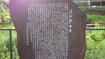 NEC_0788.JPG