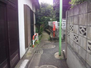 NEC_0568.JPG