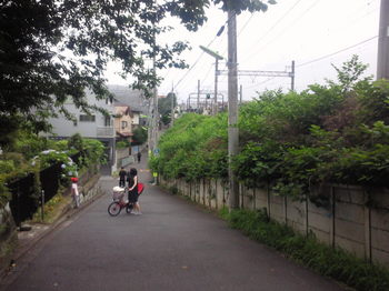 NEC_0591.JPG