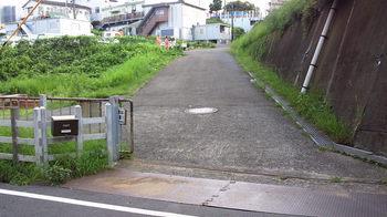 NEC_0791.JPG