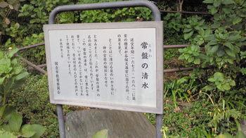 NEC_0863.JPG